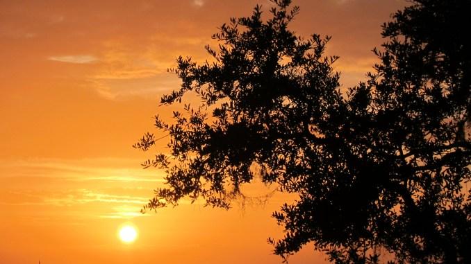 Sunrise on Eagle Island
