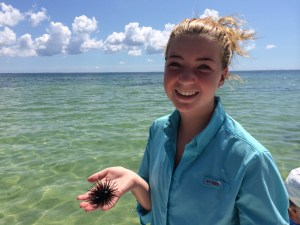 Snorkeling Port St. Joe Florida via @FieldTripswSue
