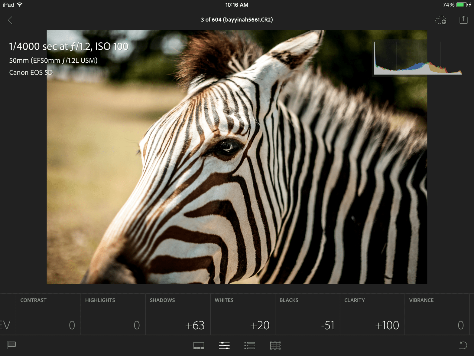 Adobe Lightroom Mobile (screenshot)