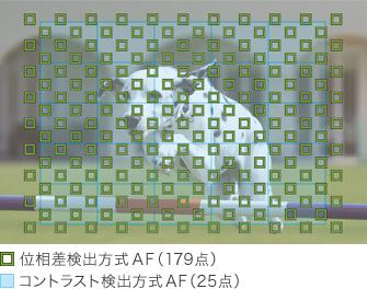 original_a5100_fasthybridAF_179