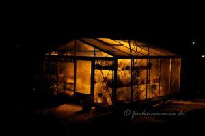 Gewächshaus bei Nacht