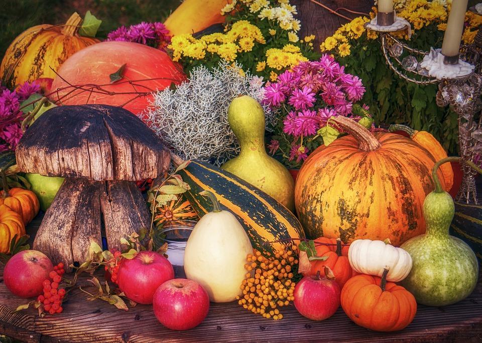 Herbstdeko für zu Hause selber machen