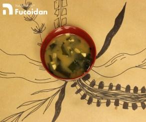 【海藻奧祕】你知道海藻擁有藥用特性嗎?