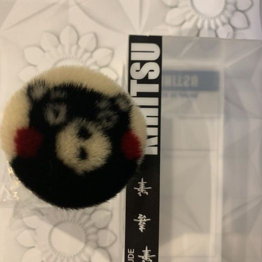 #kumamon brush 4500 yen