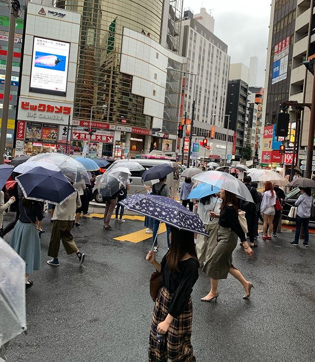All day rainy in Tokyo