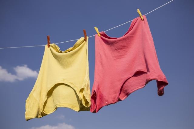 ネット 洗濯 物 虫除け
