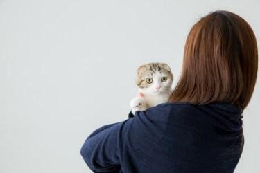 アパートでペットを飼いたい!交渉せずに飼ったらどうなる?