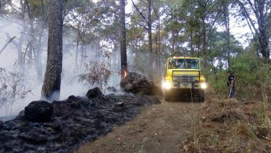Atienden incendio en Parque Nacional de Uruapan