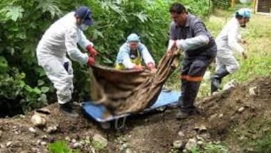 Hay 222 fosas clandestinas en México, en donde se encontraron 337 cuerpos: Alejandro Encinas