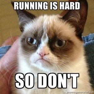 runningcat1