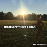 Training without a Coach