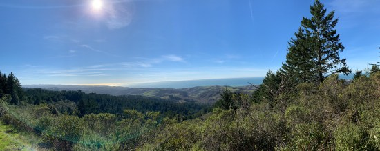 The Purisima Creek Trail