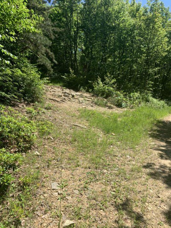 Hiking Tuscarora Mountain Pa