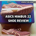 Asics Nimbus 22