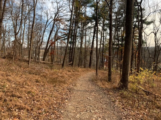 Hiking Mount Misery at Valley Forge