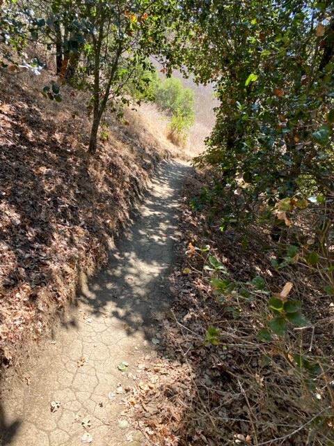 Exploring Alston Park in Napa, CA