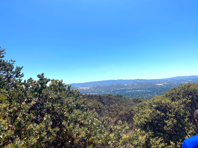 Hike at Lime Ridge Open Space
