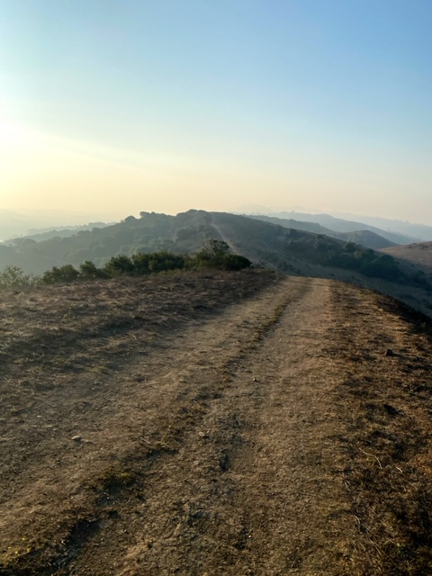 Exploring Wildcat Canyon Regional Park