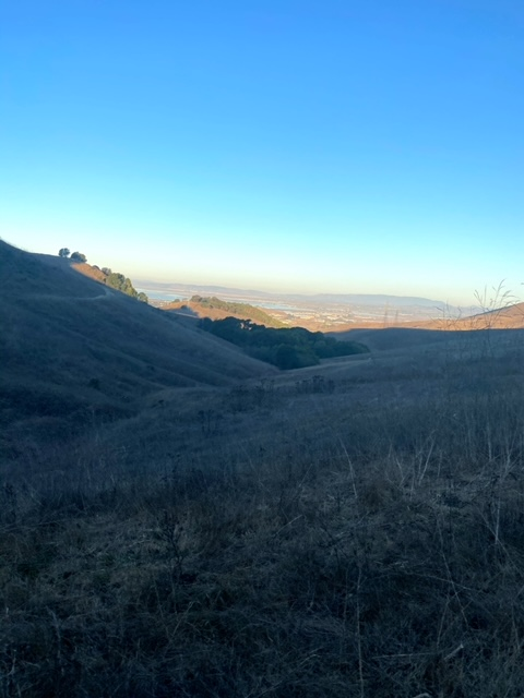 Exploring Newell Open Space Preserve (American Canyon)