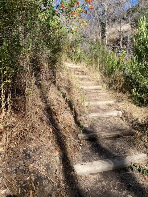 Grape Stomp and You-Walk Miwok Loop (Sonoma)