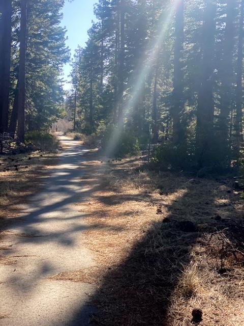 Running the Pope-Baldwin Bike Path (South Lake Tahoe)