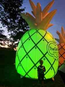 Giant Pineapples