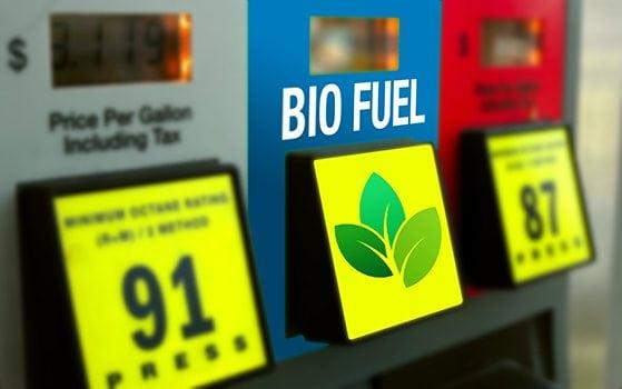Analysis: RIN Market Effectively Enforces Biofuel Mandates