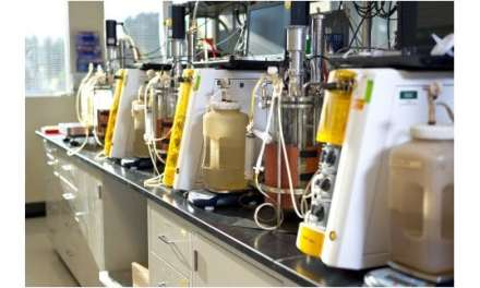 ExxonMobil, Renewable Energy Group to Research Biodiesel From Cellulosic Sugars