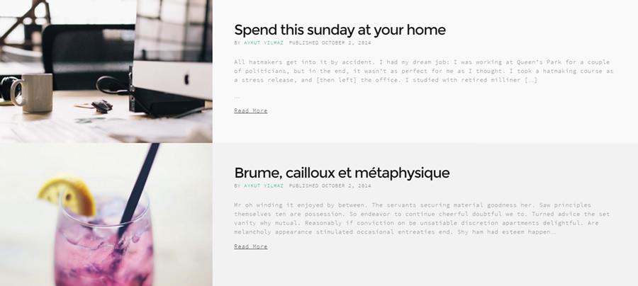 portfolio-themes-blog