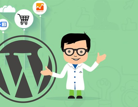Options for Your Next WordPress E-Commerce Project in 2016 WordPress Theme