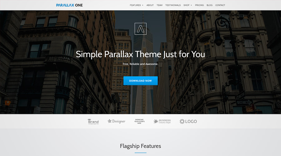 WordPress One Page Themes: Parallax One