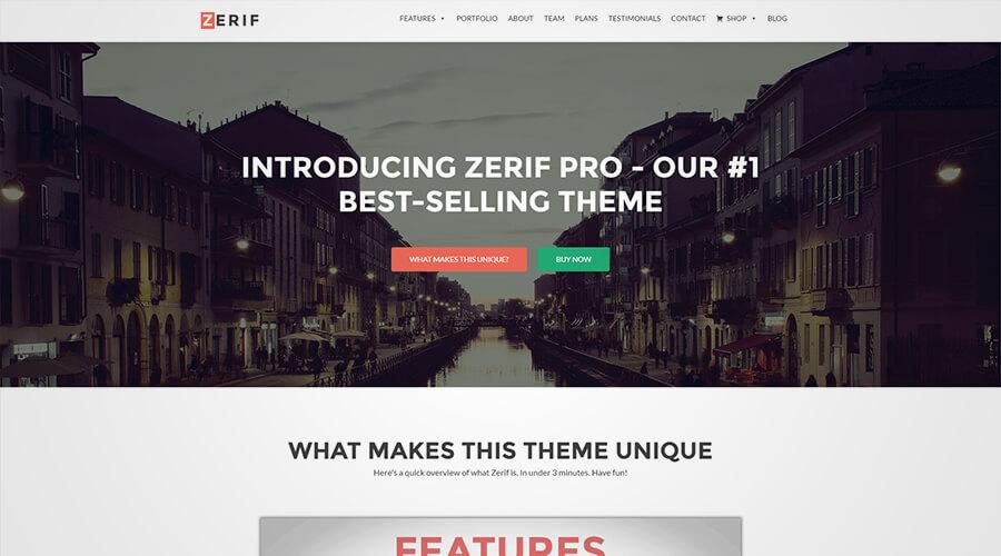 WordPress One Page Themes: Zerif Pro