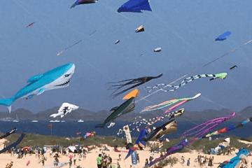 Drachenfestival Corralejo