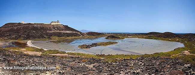 Saladar del Islote de Lobos y Faro de Martiño