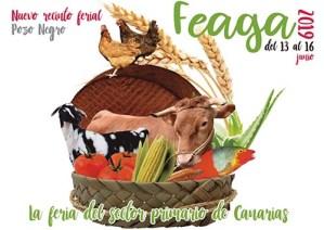 Feaga 2019 @ Pozo Negro