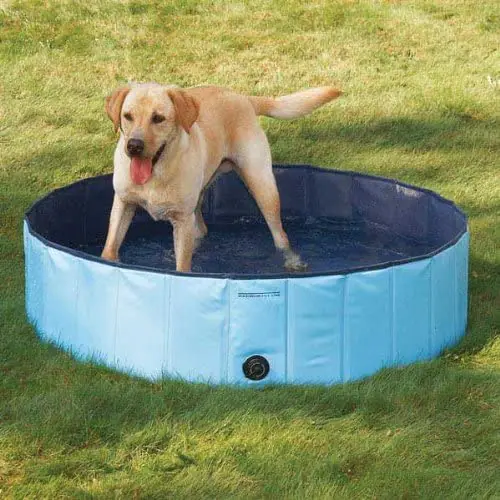 美國代購 酷小狗飛濺關於 Pvc 狗池 (中) $26 + 免運費 Cool Pup Splash About PVC Dog Pool (Medium) $26 + Free Shipping