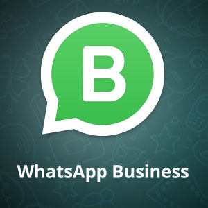whats-app-business-300