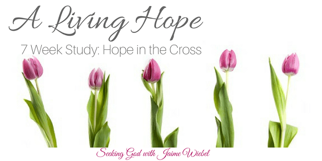 We are given great mercy. We are given a new birth. We have a living hope. The best part is it all stands on the firm foundation of a living God! 1 Peter 1:3 Join Seeking God for a 7 Week Study on the Hope of the Living God!