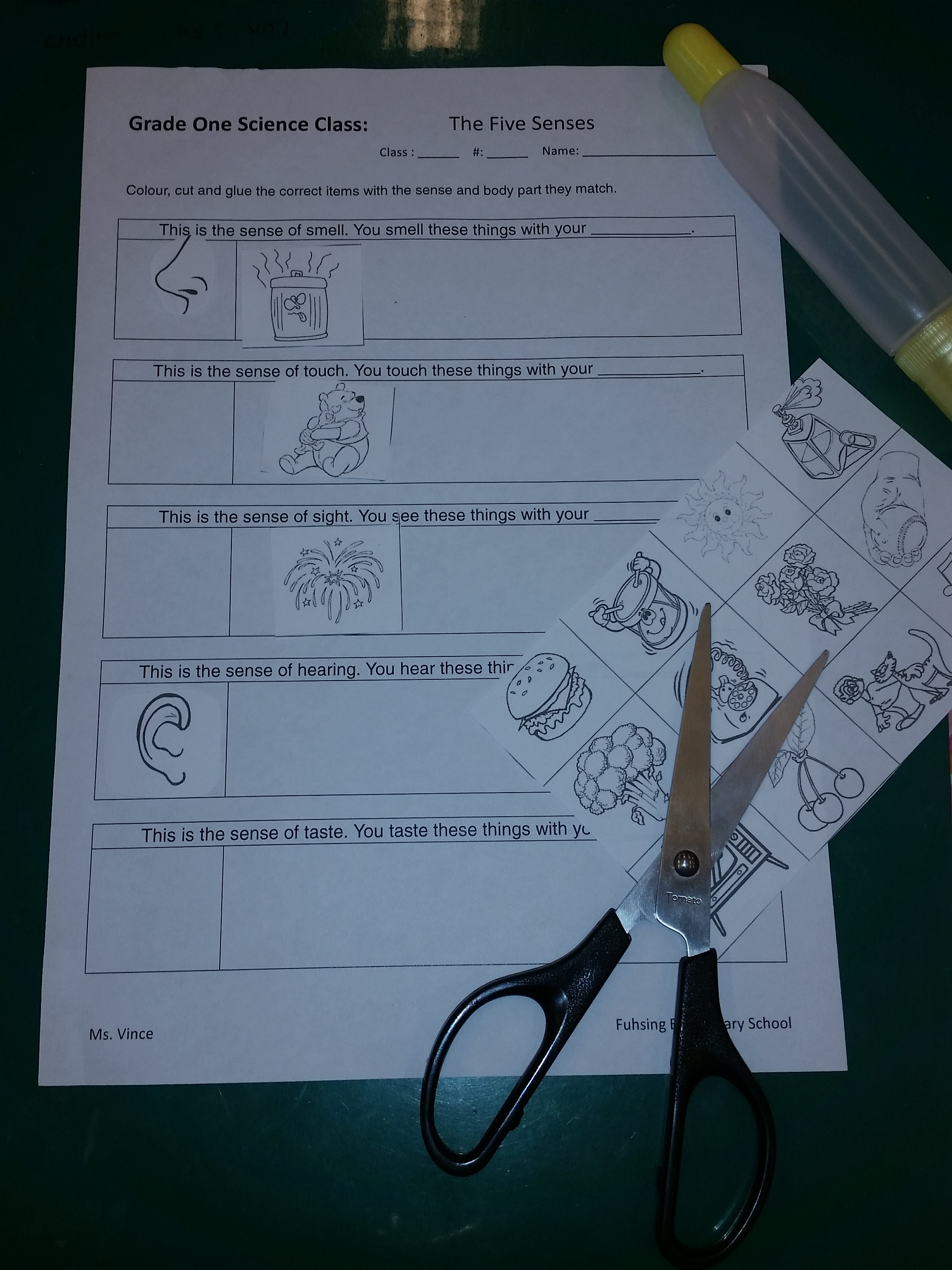 Worksheets Page 2 Grade One Science