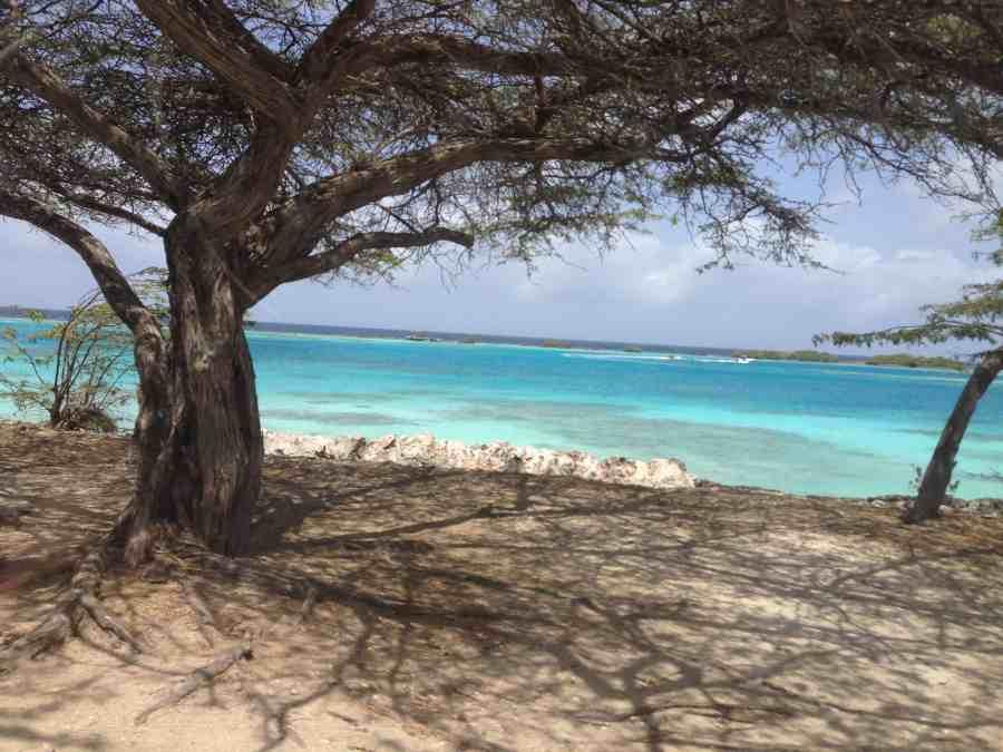 praias Aruba