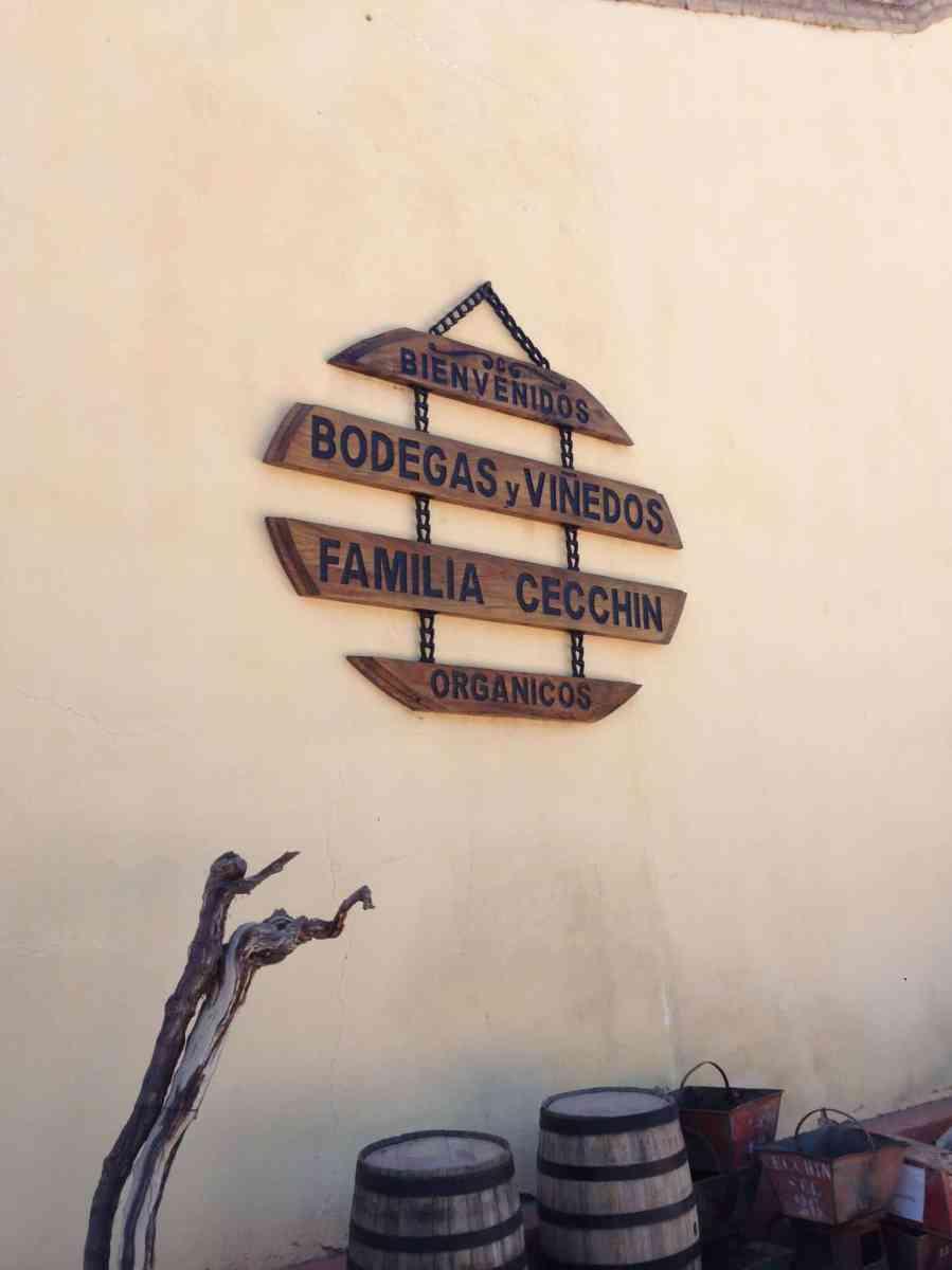 Wine Bike Tour - Mendoza