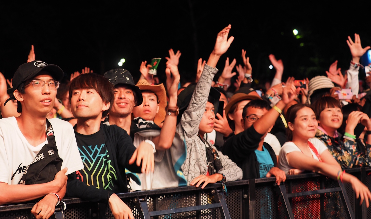 Fuji Rock crowd