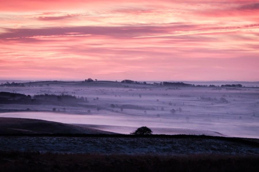 2014/12/mist-7.jpg