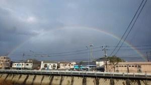 藤井カイロプラクティック 虹