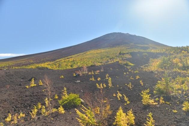 富士の眺望