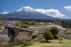 霊園からの富士