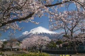 富士山ビデオギャラリー
