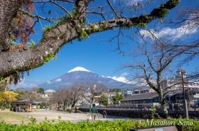 浅間大社ふれあい広場からの富士山