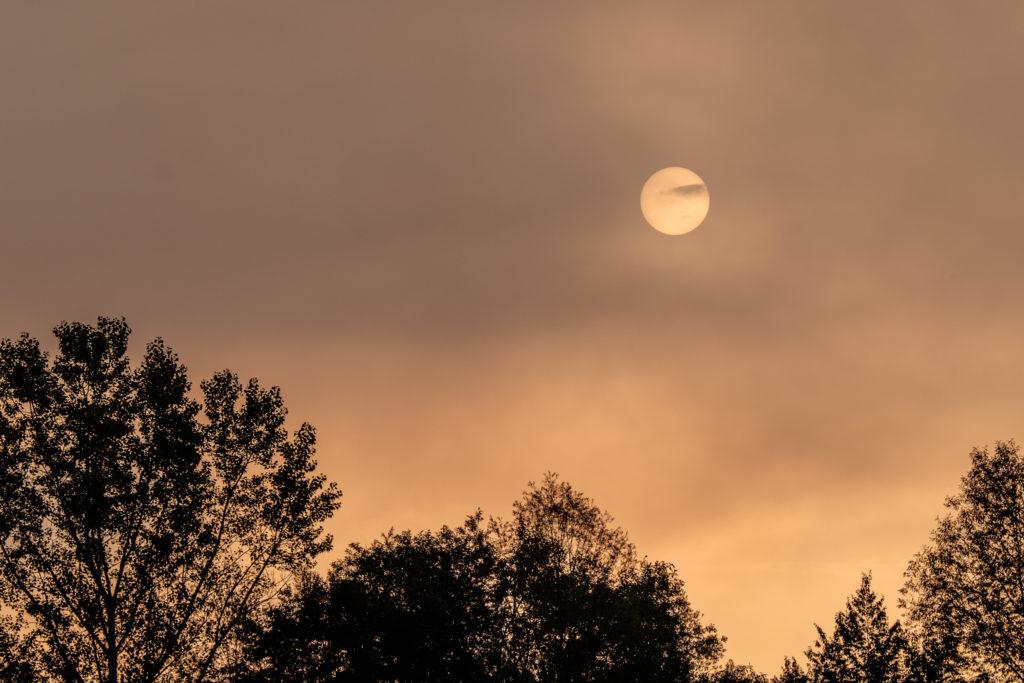 Sonne hinterm Nebel | Fujifilm | X-T1 | 50-140mm