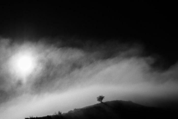 """""""Sol de inverno"""" por Xurxo Mariño, con Fuji X-E2."""